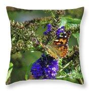 Butterfly Joy Throw Pillow