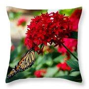 Butterfly Kiss Throw Pillow