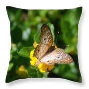 Butterfly Land Throw Pillow