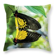 Butterfly Mating Throw Pillow
