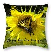 Butterfly Monarch Ba Throw Pillow