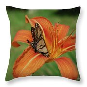 Butterfly On A Blooming Orange Daylily Flower Blossom Throw Pillow