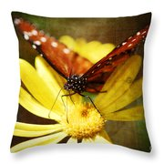 Butterfly On A Daisy  Throw Pillow