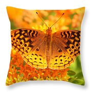 Butterfly On Butterfly Weed Throw Pillow