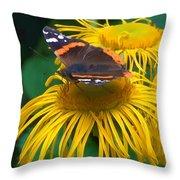 Butterfly On Chrysanthemum Flowers Throw Pillow