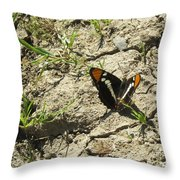 Butterfly On Cracked Ground Throw Pillow
