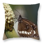 Butterfly On Grass Tree Flowers Throw Pillow