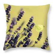 Butterfly On Lavender Flowers Throw Pillow