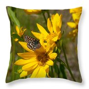 Butterfly On Mule's Ear Throw Pillow