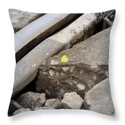 Butterfly On Railroad Tracks Throw Pillow