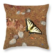 Butterfly On The Beach Throw Pillow