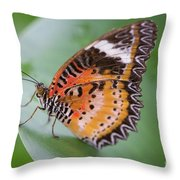 Butterfly On The Edge Of Leaf Throw Pillow by John Wadleigh