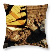Butterfly On The Rocks Throw Pillow