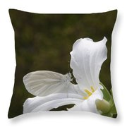Butterfly On Trillium  Throw Pillow