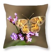 Butterfly On Verbena Throw Pillow
