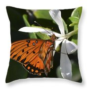 Butterfly On White Throw Pillow