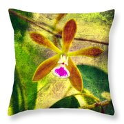Butterfly Orchid - Encyclia Tampensis Throw Pillow
