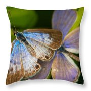 Butterfly Pair Throw Pillow