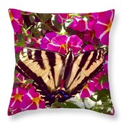 Swallowtail Butterfly Pink Throw Pillow