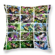 Butterfly Plethora I Throw Pillow