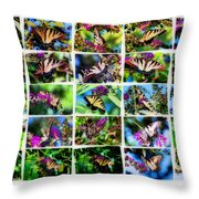 Butterfly Plethora II Throw Pillow