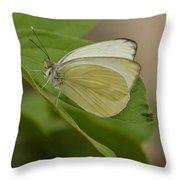 Butterfly Profile Throw Pillow