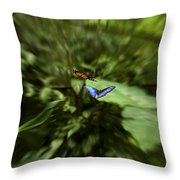 Butterfly Race Throw Pillow