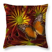 Butterfly Resting On Chrysanthemums Throw Pillow