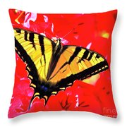 Butterfly Series #11 Throw Pillow