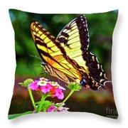 Butterfly Series #8 Throw Pillow