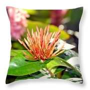 Butterfly Snack Throw Pillow