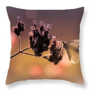 Butterfly Spirit #03 Throw Pillow by Loriental Photography