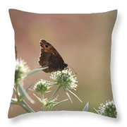 Butterfly Spring Nature Morning Scene Throw Pillow
