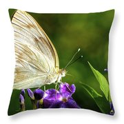 Butterfly Tea Time Throw Pillow