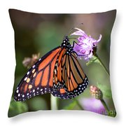 Butterfly - The Monarch  Throw Pillow