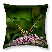 Butterfly Victory Throw Pillow