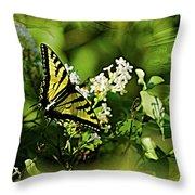 Butterfly Wall Decor Throw Pillow