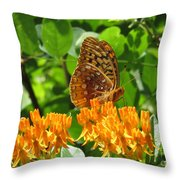 Butterfly Weed Fritillary Throw Pillow