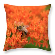 Butterfly Weed Heaven Throw Pillow