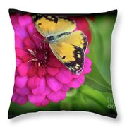 Butterfly Whispers Throw Pillow
