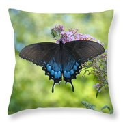 Butterfly Wish 1 Throw Pillow
