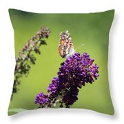 Butterfly With Flowers Throw Pillow