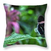 Butterfly3 Throw Pillow