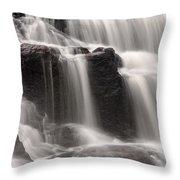 Buttermilk Detail Throw Pillow