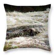 Buttermilk Falls Bubbles Throw Pillow