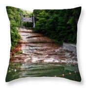 Buttermilk Falls State Park New York 02 Throw Pillow