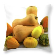 Butternut Squash With Gourds  Throw Pillow