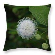 Button Bush Throw Pillow