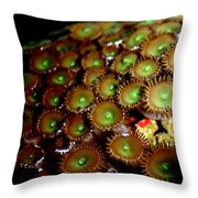 Button Polyps Throw Pillow