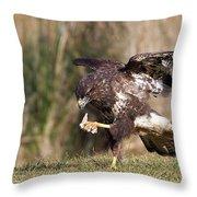 Buzzard Feeding Throw Pillow